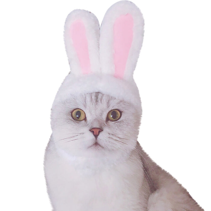 Cat Clothes Costume Bunny Rabbit Ears Hat Pet Cat Cosplay Clothes For Cat