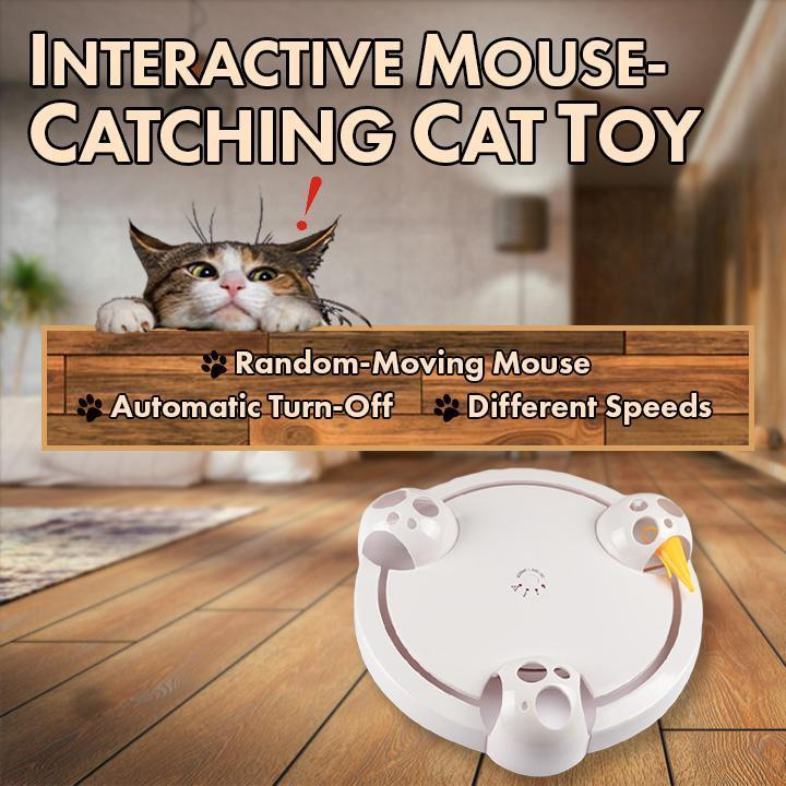 Interactive Mouse-Catching Cat Toy