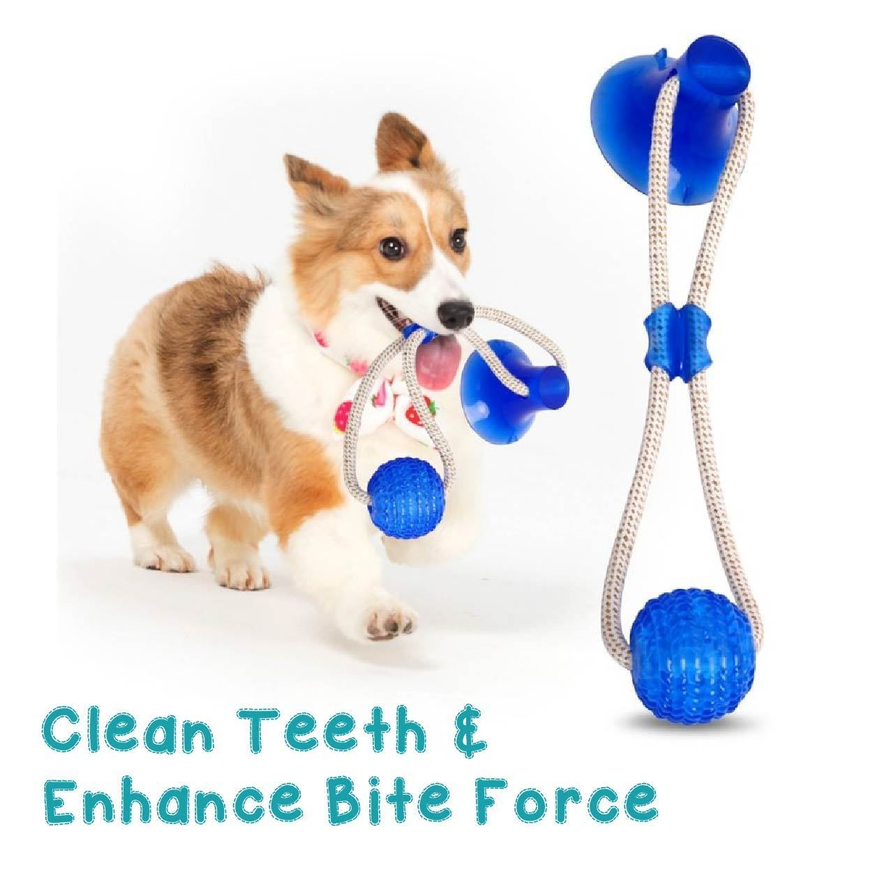 Pet Toys - Multifunction Pet Molar Bite Toy