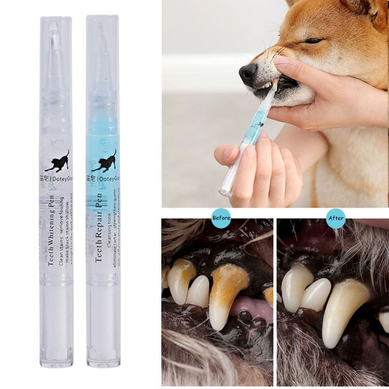 5ml Pets Teeth Cleaning Tool Dogs Cats Tartar Remover Dental Stones Scraper Plastic Cleaning Pen Cleaning Tools - Coeexus