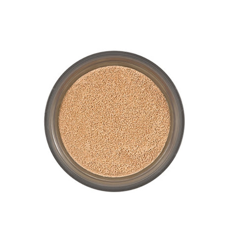 [IOPE] 2021 NEW Air Cushion Cover SPF50+ 15g Refill-Holiholic