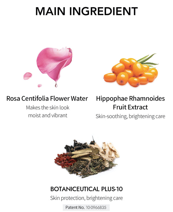 [BONABELLA OFFICIAL] Rose Water Tone Up Cream 40ml
