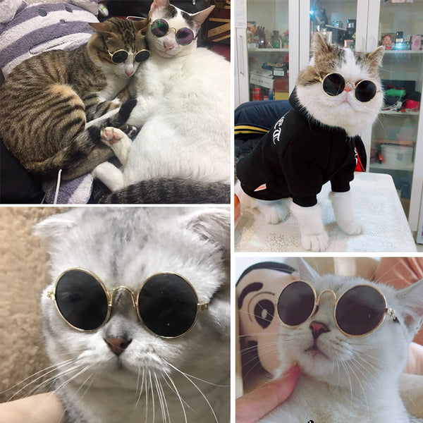 Pet Cat Glasses Dog Glasses Pet Products for Little Dog Cat Eye Wear Dog Sunglasses Photos Props Accessories Pet Supplies Toy - Satisfashion.ca