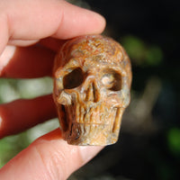 Crazy Lace Agate Crystal Skull Realistic Gemstone Carving