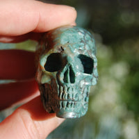 Blue Opalized Petrified Wood Carved Crystal Skull
