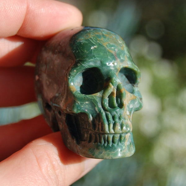 Rare Blue Opalized Petrified Wood Carved Crystal Skull
