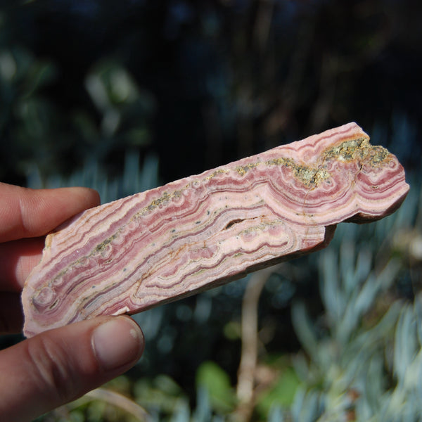 Rhodochrosite and Pyrite Crystal Gemstone Slab