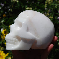 "HUGE 5"" Porcelain Pink Aragonite Carved Crystal Skull 3.6lb"
