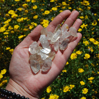 Herkimer Diamond Clear Quarts Crystal Points 1 or 6 Pieces