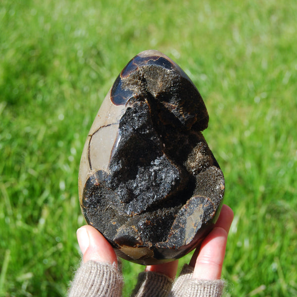 Septarian Dragon Egg Geode Crystal Egg