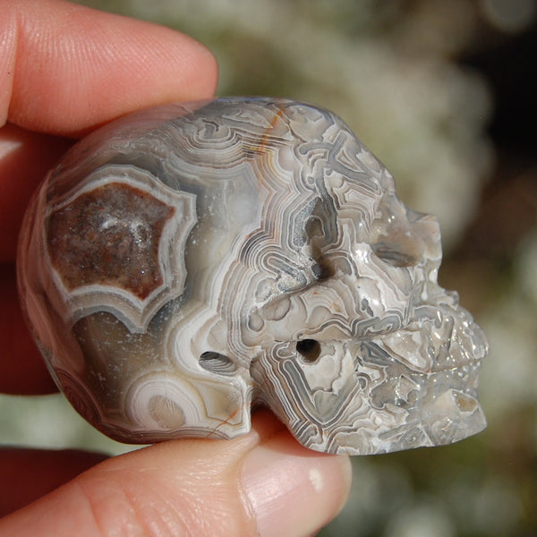 Laguna Lace Agate Geode Carved Crystal Skull Realistic Gemstone Carving