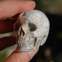 "2"" Laguna Lace Agate Geode Carved Crystal Skull Realistic Gemstone Carving"