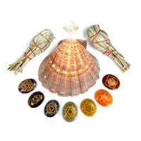 Chakra Crystal Palm Stone and Smudge Kit with Lions Paw Shell