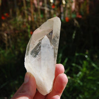 "175g 4"" Lemurian Seed Tantric Twin Golden Healer Quartz Crystal Starbrary from Brazil  Timelink Devic Temple"