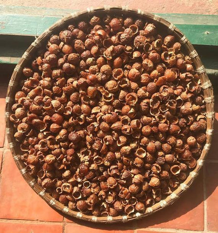 Soap Berries/ Soap Nuts