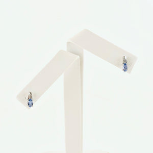Graceful Oval Tanzanite Stones in Silver Earrings