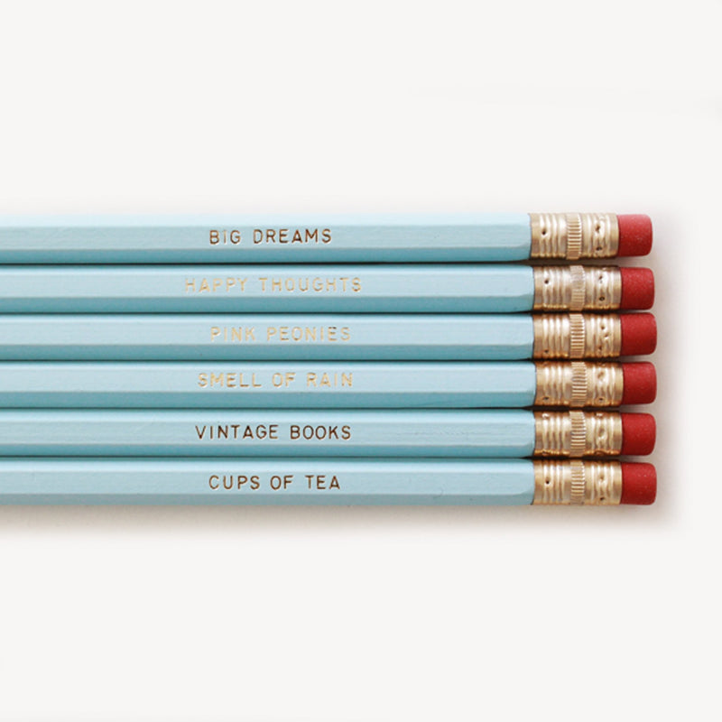NECESSITIES PENCIL SET- BLUE - Miss Poppy Design