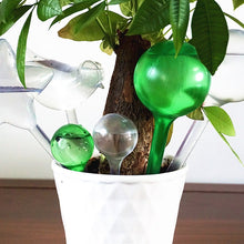 Load image into Gallery viewer, Houseplant Watering Bulb - Water Saviour! - Kitty Cactus