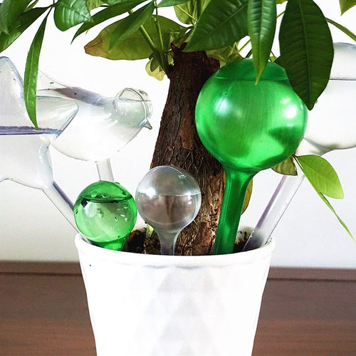 Houseplant Watering Bulb - Water Saviour! - Kitty Cactus