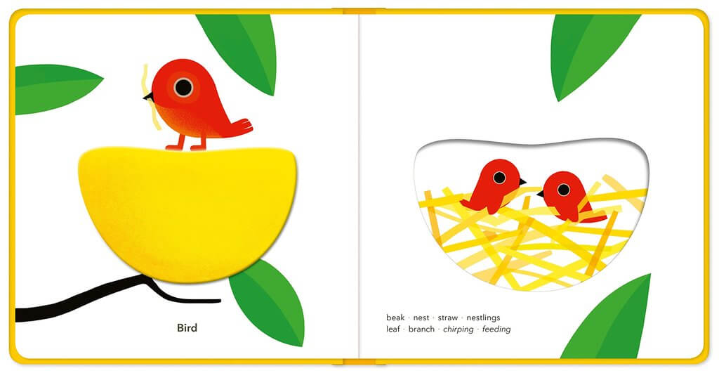 Touch think learn Fly Book - The Mango Tree
