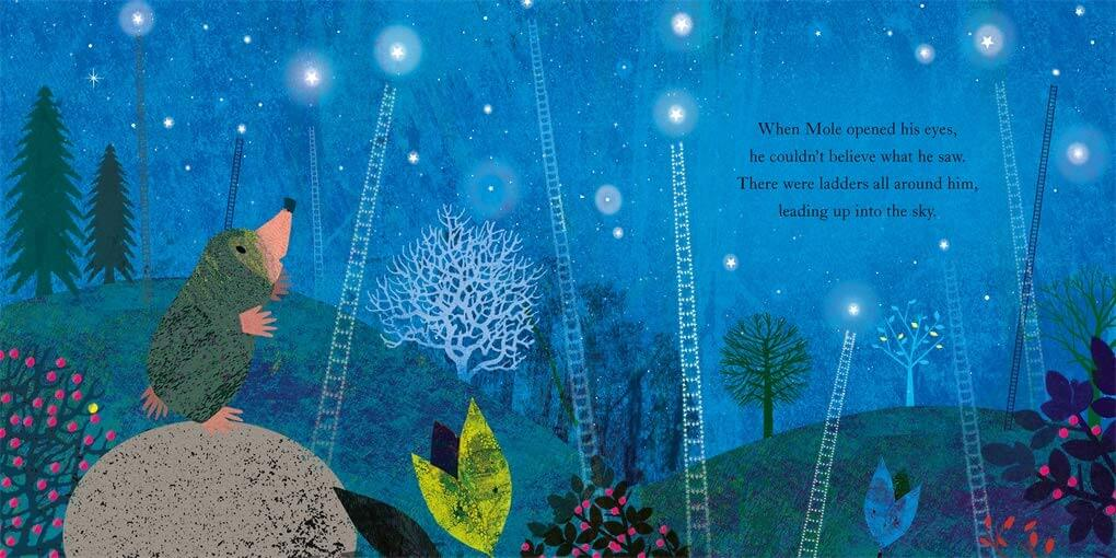 Moles star Book - The Mango Tree