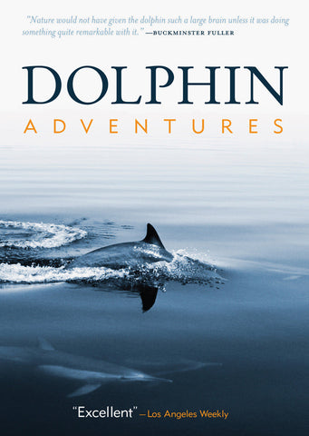 Dolphin Adventures (DVD)