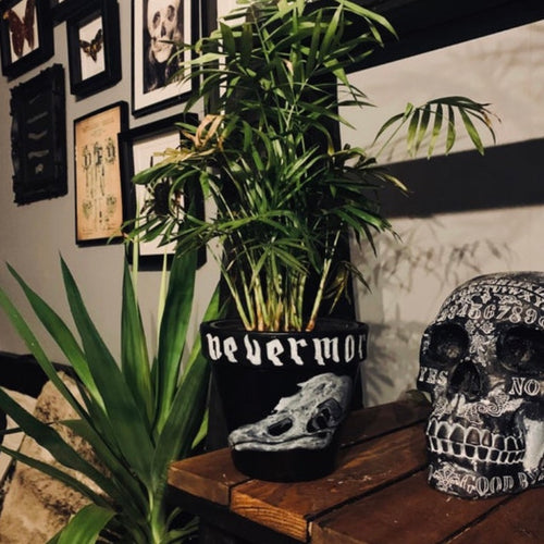 Nevermore Raven Plant Pot - Happy Emo