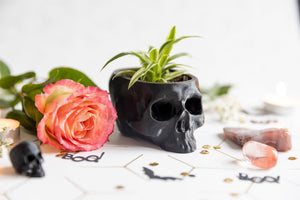 Skull Planter Medium - Happy Emo