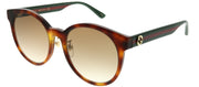 Gucci GG 0416SK 005 Round Plastic Tortoise/ Havana Sunglasses with Brown Gradient Lens