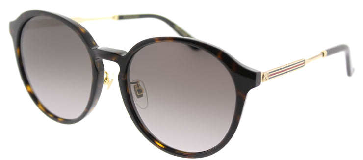 Gucci GG 0205SK 003 Fashion Plastic Brown Sunglasses with Brown Gradient Lens
