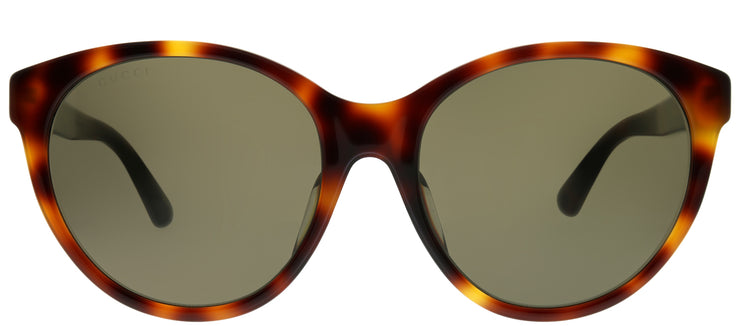 Gucci GG 0419SA 002 Round Plastic Tortoise/ Havana Sunglasses with Brown Lens