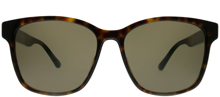 Gucci GG 0417SK 003 Square Plastic Tortoise/ Havana Sunglasses with Brown Lens
