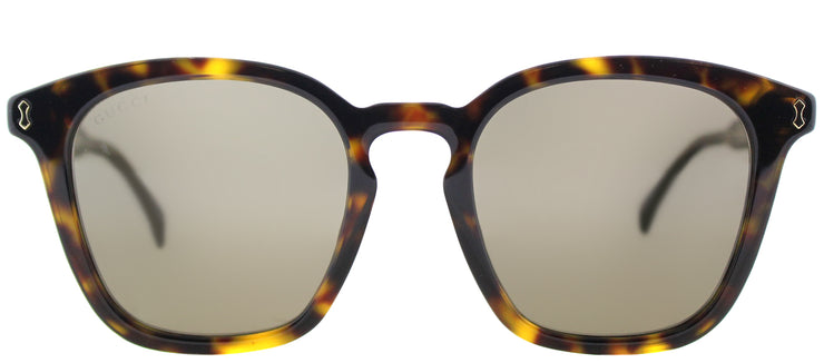 Gucci GG 0125S 002 Square Plastic Tortoise/ Havana Sunglasses with Brown Lens