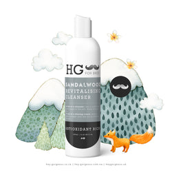 HG For Bros Sandalwood Cleanser