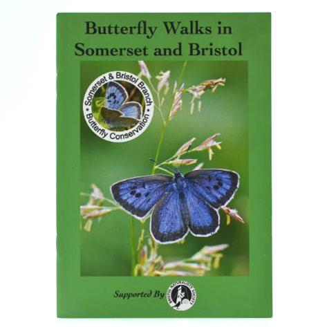 Butterfly Walks in Somerset and Bristol