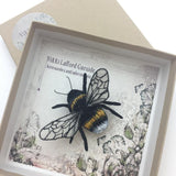 White-Tailed Bumblebee Brooch