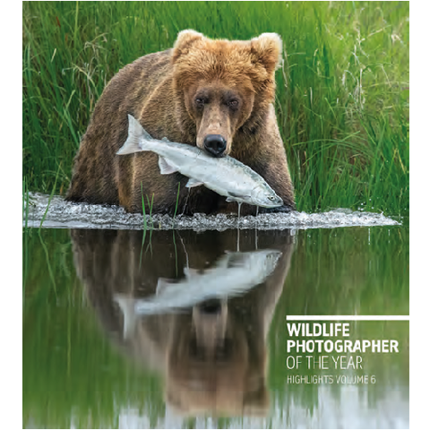 Wildlife Photographer of the Year Highlights Volume 6