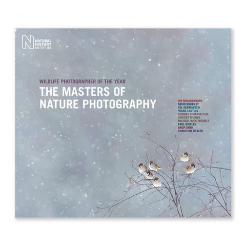 Wildlife Photographer The Masters of Nature Photography: Volume Two