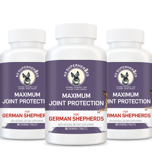 Maximum Joint Protection for German Shepherds