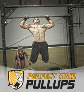 Perfect Your Pull Ups Training Course