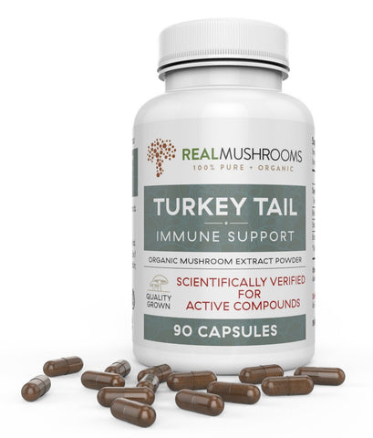 Turkey Tail Mushroom Capsules by Real Mushrooms | Best Chinese Medicines