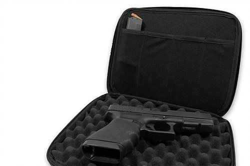 Compression Molded Double Pistol Case