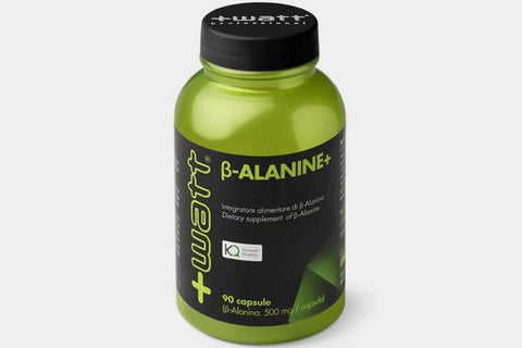 PRE-WORKOUT Beta-Alanine+  +WATT NUTRITION