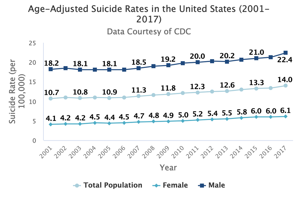 Suicide Rates 2001 to 2017
