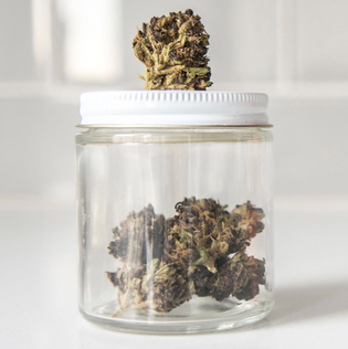Jar of Premium Organic Hemp Flower with a hemp bud on top.