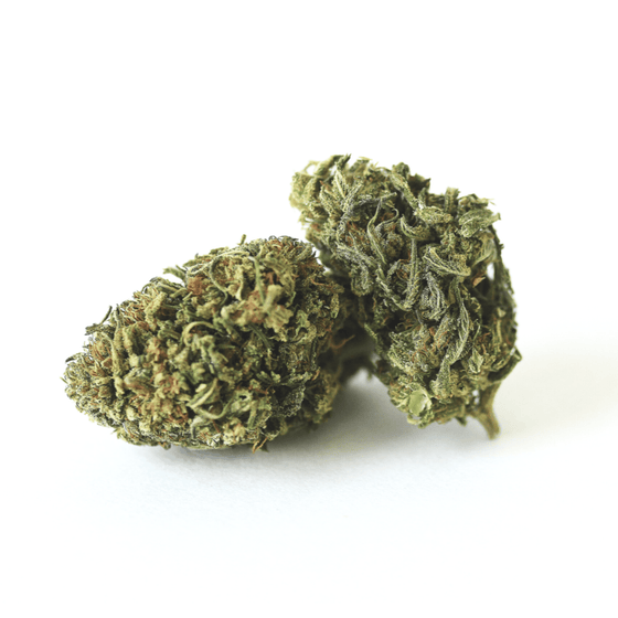 Photo of organic Acerola (Cobbler x Cherry Wine) trimmed organic Hemp flower