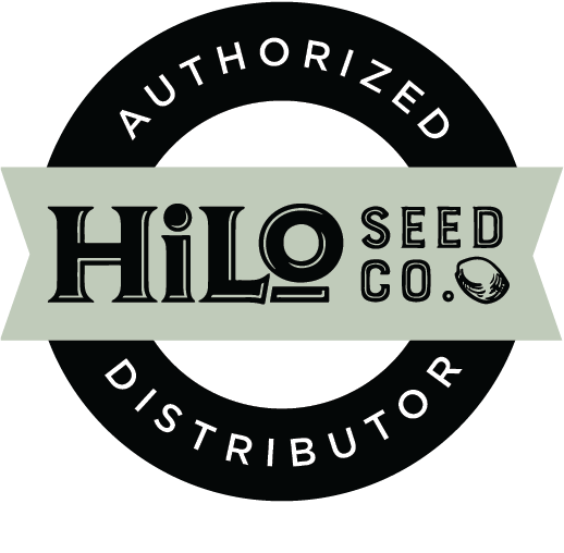 Authorized HiLo Seed Co. Dealer, Auto Pilot Feminized Auto Flower Hemp Seeds
