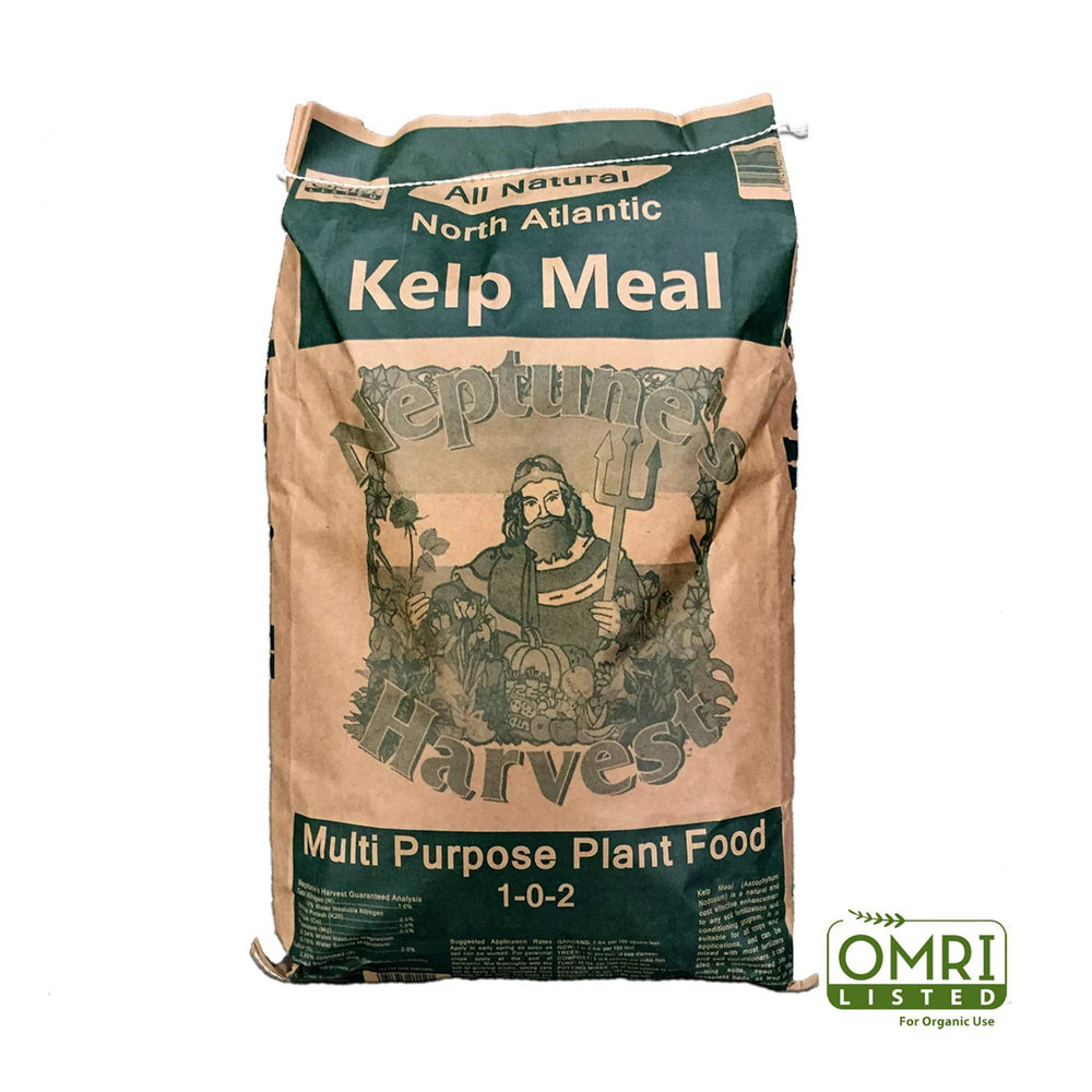 Neptune's Harvest Organic Kelp Meal (1-0-2) is dried and ground Rock Weed (Ascophyllum Nodosum), which grows in the cold clean waters along the New England coast, and is known as the best marine plant available for agriculture today.