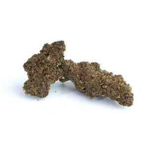 Purple Frost Premium Hemp Flower