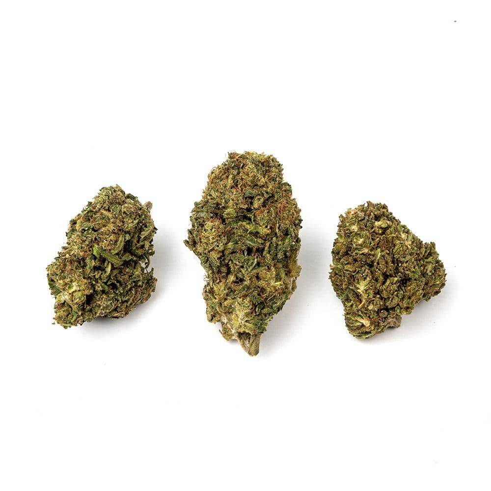Load image into Gallery viewer, Sour Diesel CBD Premium Organic Hemp Flower trimmed buds